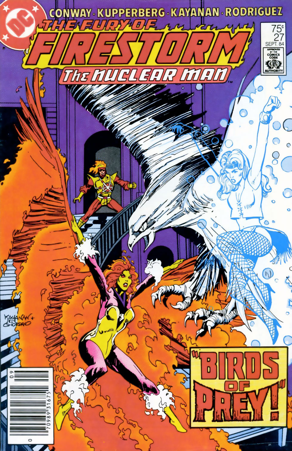 Fury of Firestorm #27 cover by Rafael Kayanan and Dick Giordano